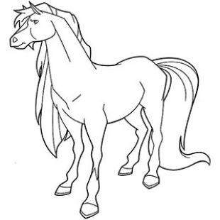 Horseland DressUp